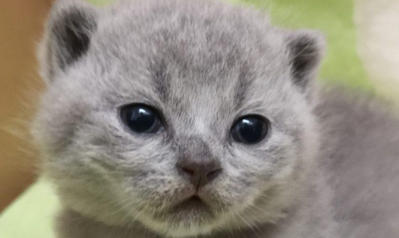 Łucja Fabijansky *PL została pierwszy raz mamą